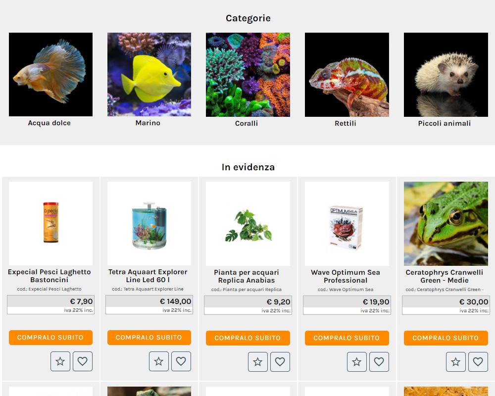 contenuti homepage sito web e grafica box