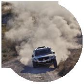 crea sito web per rally011