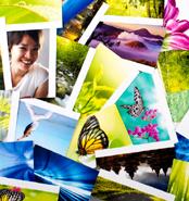 possibilità di pubblicazione di foto e video divisibili per anno